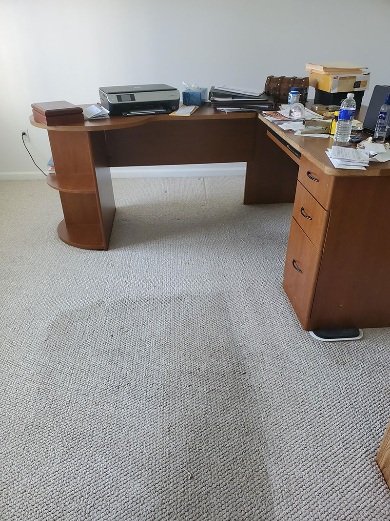 Office Carpet Cleaning During